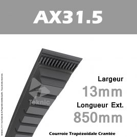 Courroie AX31.5 - Continental