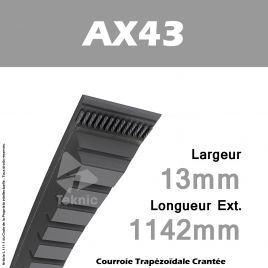 Courroie AX43 - Continental
