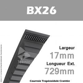 Courroie BX26 - Continental
