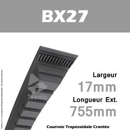 Courroie BX27 - Continental