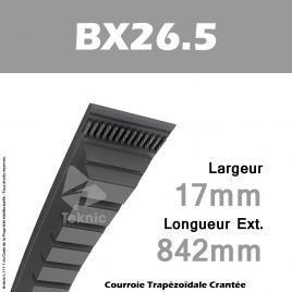 Courroie BX26.5 - Continental