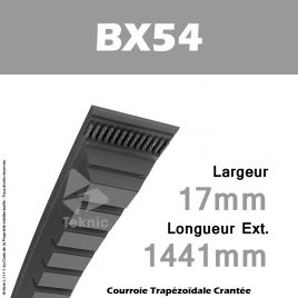 Courroie BX54 - Continental
