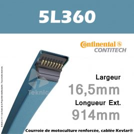 Courroie 5L360 - Continental