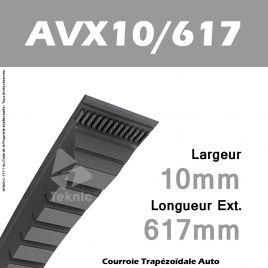 Courroie AVX10/0617 - Continental