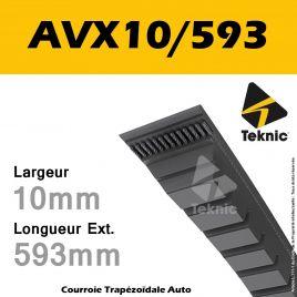 Courroie AVX10/0593 - Teknic