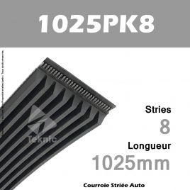Courroie Poly-V Auto 1025PK8 - Continental