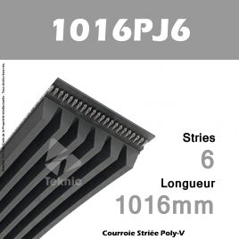 Courroie Poly-V 1016PJ6 - Continental