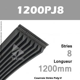 Courroie Poly-V 1200PJ8 - Continental