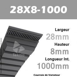 Courroie de Variateur 28X8-1000 Li