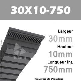 Courroie de Variateur 30X10-750 Li