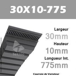 Courroie de Variateur 30X10-775 Li
