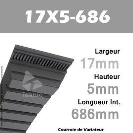 Courroie de Variateur 17X5-686 Li