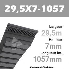 Courroie de Variateur 29,5X7-1057 Li