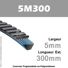 Courroie Polyflex 5M300