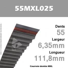 Courroie Dentée 55 MXL 025