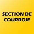 SECTION DE COURROIE