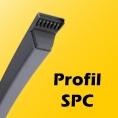 SPC - 22mm x 18mm